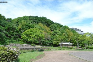 山田富士公園広場から山田富士を仰ぐ