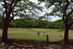 桜に取り囲まれた山崎公園の広場