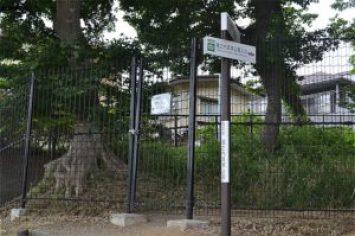 堀之内貝塚公園への入口(裏口)