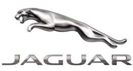 Jaguar and Mille Miglia 2013