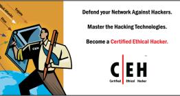 Hackers, ¿delincuentes cibernéticos o profesionales certificados?