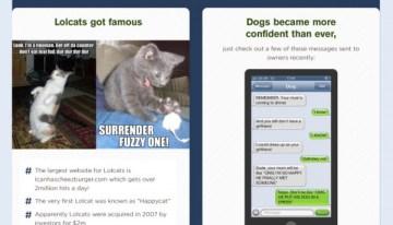 Infografía: Los animales más famosos de las redes sociales