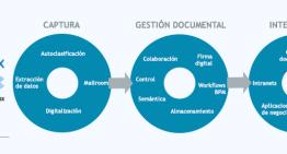 Yerbabuena Software libera un plugin de traducciones para Nuxeo