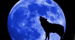 Hoy tendremos el fenómeno Luna Azul en el cielo