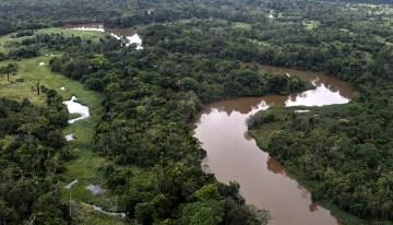 Cooperación regional es crítica para el futuro de la Amazonia