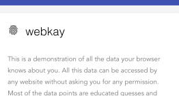 ¿Qué sabe el navegador sobre ti?, webkay te responde