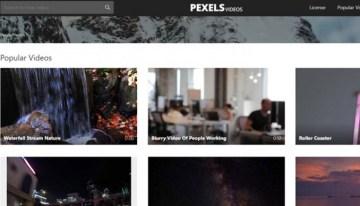 Pexels Videos, videos gratuitos para diversos proyectos