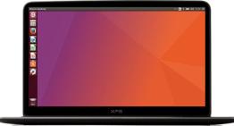 Bionic Beaver, la denominación de Ubuntu 18.04 LTS