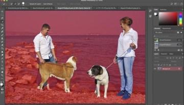 Photoshop usará Inteligencia Artificial para seleccionar elementos