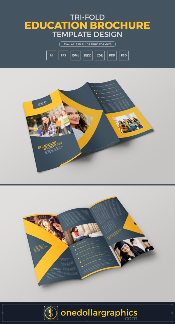 Tri-fold Education Brochure Template Design In Ai Eps