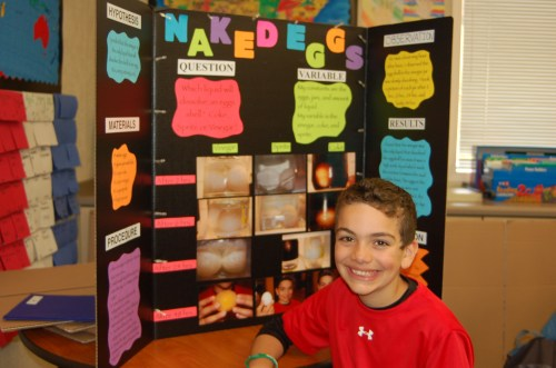 small resolution of Green Elementary School Science Fair Inspires Student Scientists    OneDublin.org