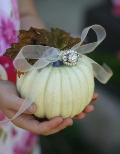 Wedding ring bearer pillow alternatives 22Forrás:http://www.etsy.com