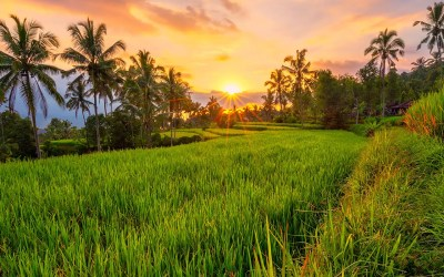 20 Pictures from Bali that make me so stoked I'm Heading Back