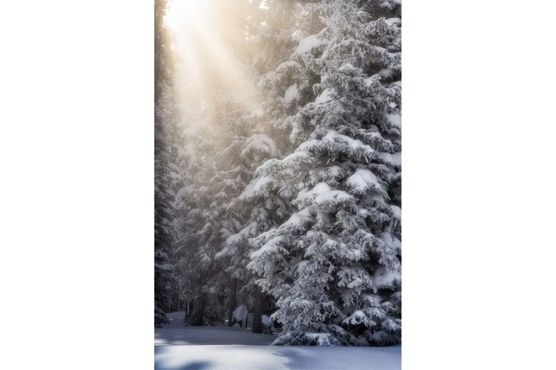 Fresh Snow at Beaver Creek Colorado Fine Prints Wall Art