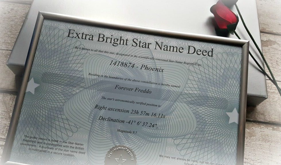 certificate for name your own star gift idea