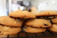 Monster Mix Cookies https://onegirlstasteonlife.wordpress.com/2012/08/24/monster-mash/
