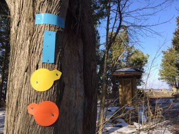Trail guide, Mt Nemo