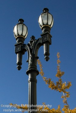 Love these old lamp posts all over the LA area