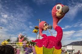 rose-parade-floats-010216-049-C-700px
