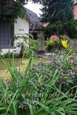 photo-walk-talk-011817-051-c-500px