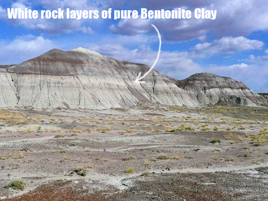 Image result for bentonite clay