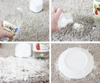 A Simple, Effective Remedy For Pet Stains On Carpets  One ...