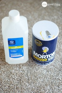 Homemade Carpet Degreaser  One Good Thing by Jillee
