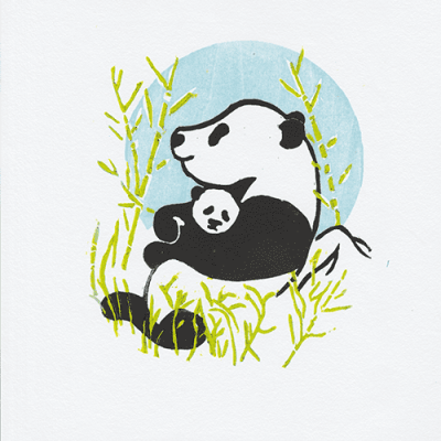 Limited edition panda print andrew gray art