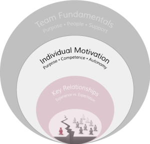 The Architecture of Highly-Effective Teams: Importance of Individual Motivation