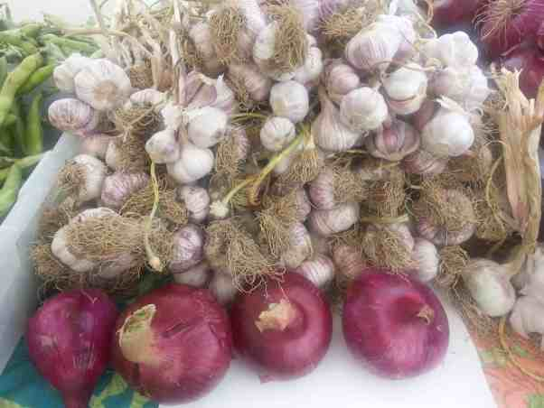 Garlic and red onions