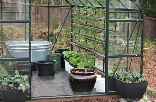 How to Find Free Containers For Your Garden - One Hundred