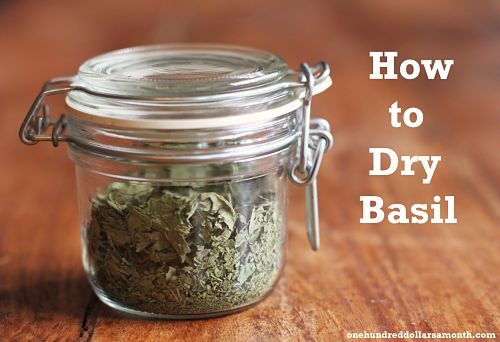 how to dry basil