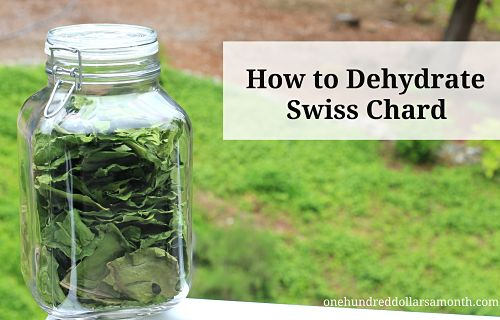 how to dehydrate swiss chard