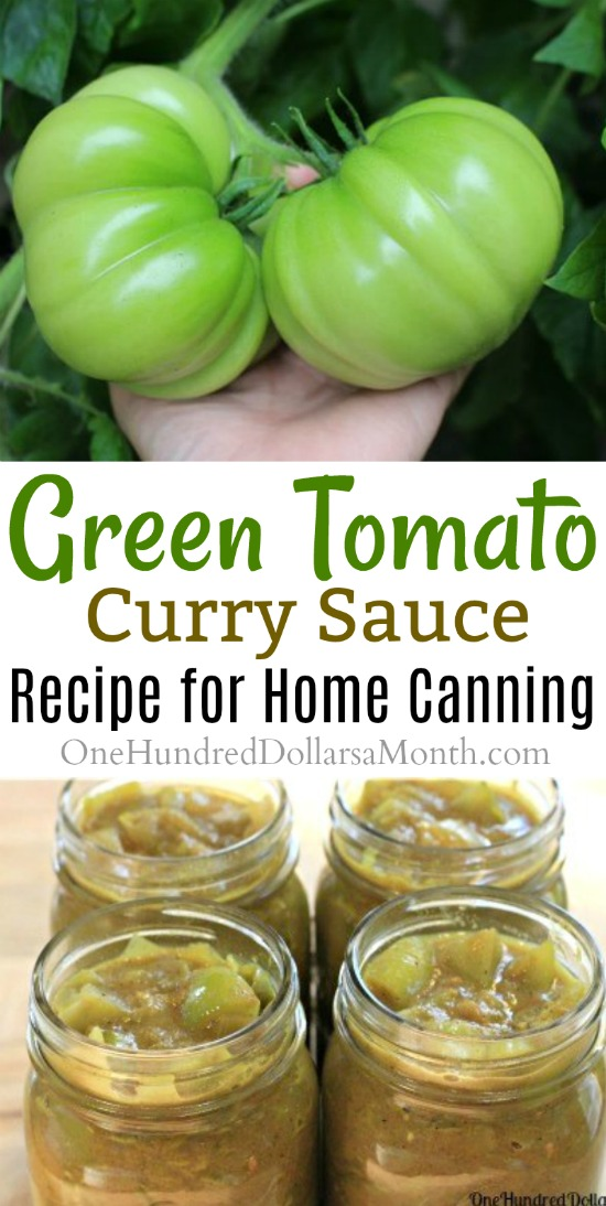 Canning 101 green tomato curry sauce one hundred dollars a month this awesome green tomato recipe comes from my sweet friend jane she found it in the book preserving for all seasons forumfinder