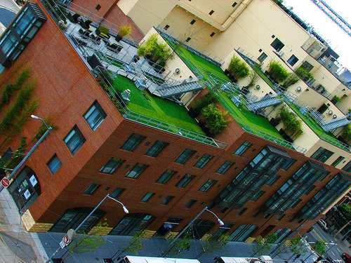 Green Gardens  Rooftop Gardens in the City  One Hundred