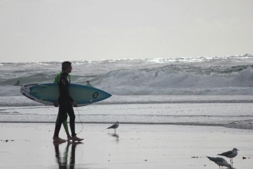 salt creek beach dana point california