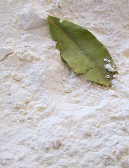 bay leaf in flour 001