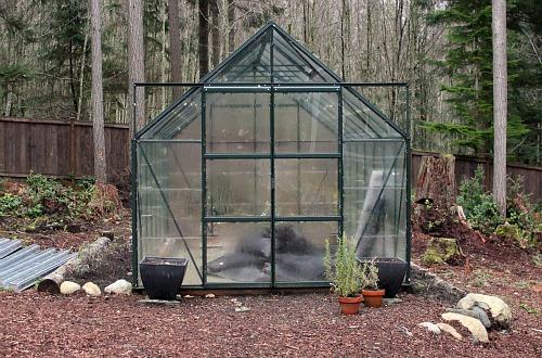 magnum glass greenhouse the glass gardener