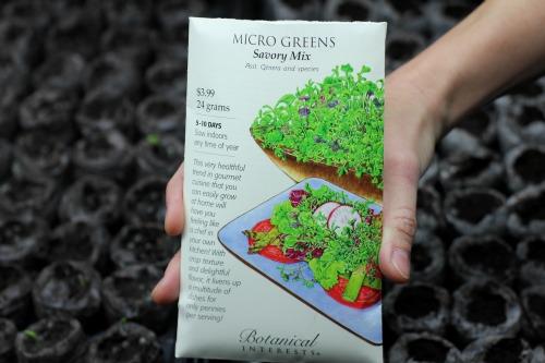 botanical interests micro greens seeds
