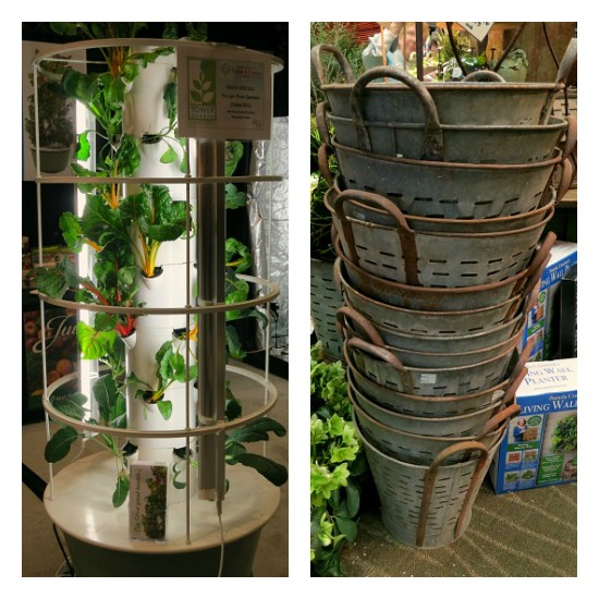 hydroponic gardening olive basket