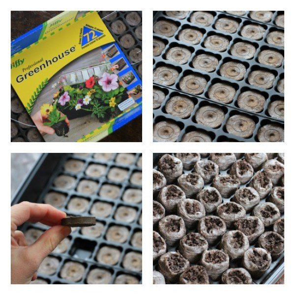 how to use jiffy greenhouse