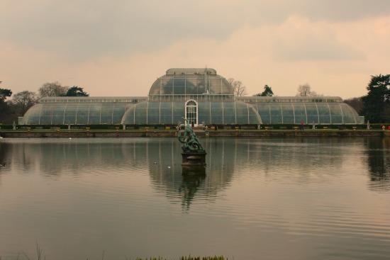 palm house green house kew gardens