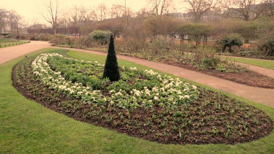 spring flowers hyde park