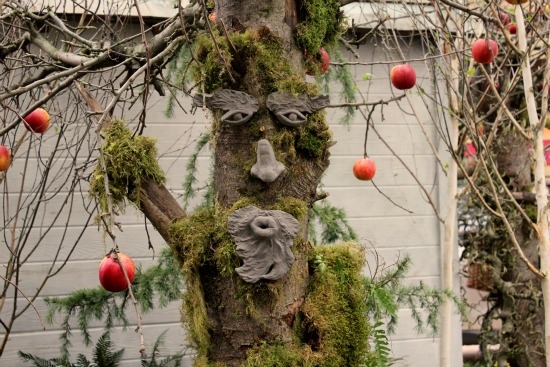 tree faces