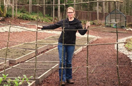 DIY pea bean garden trellis