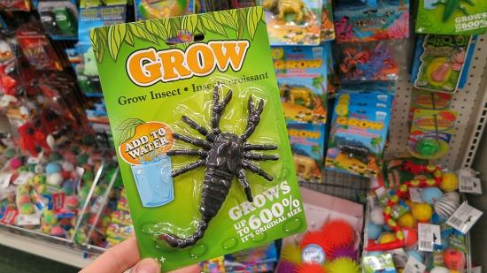 grow bugs