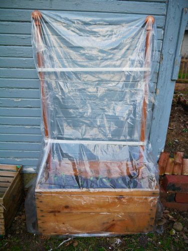 DIY Greenhouse organic gardening