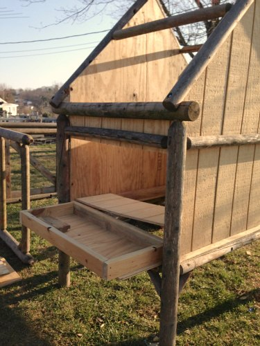 DIY chicken coop designs