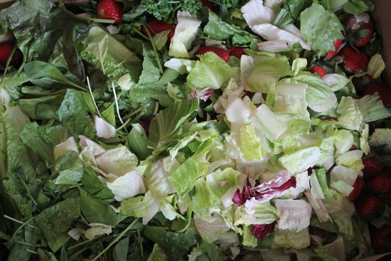 lettuce blend