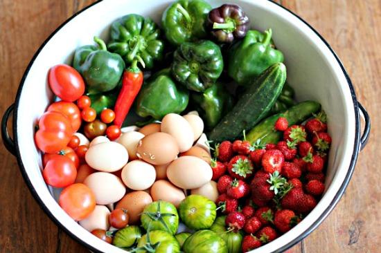 mavis-garden-blog-fresh-vegetables